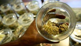 A medical-marijuana sample is displayed at 420 Dank in Detroit in September 2015.