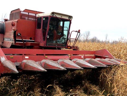 Fall_Harvest-4.jpg