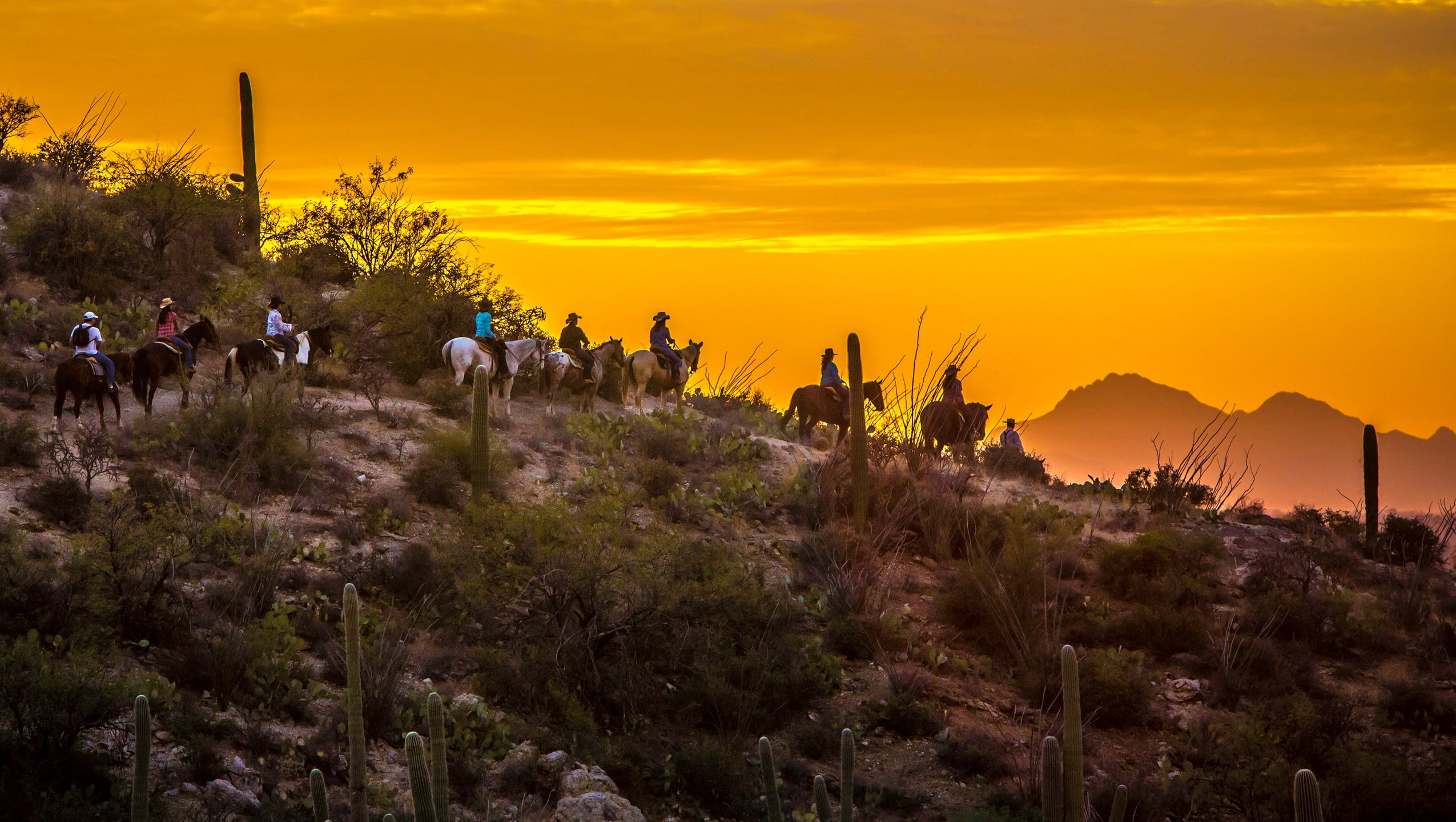 Cowboy living comes with a Southwest flavor at Tucson's Tanque Verde Ranch, which Ehringer calls the state's premier ranch resort.
