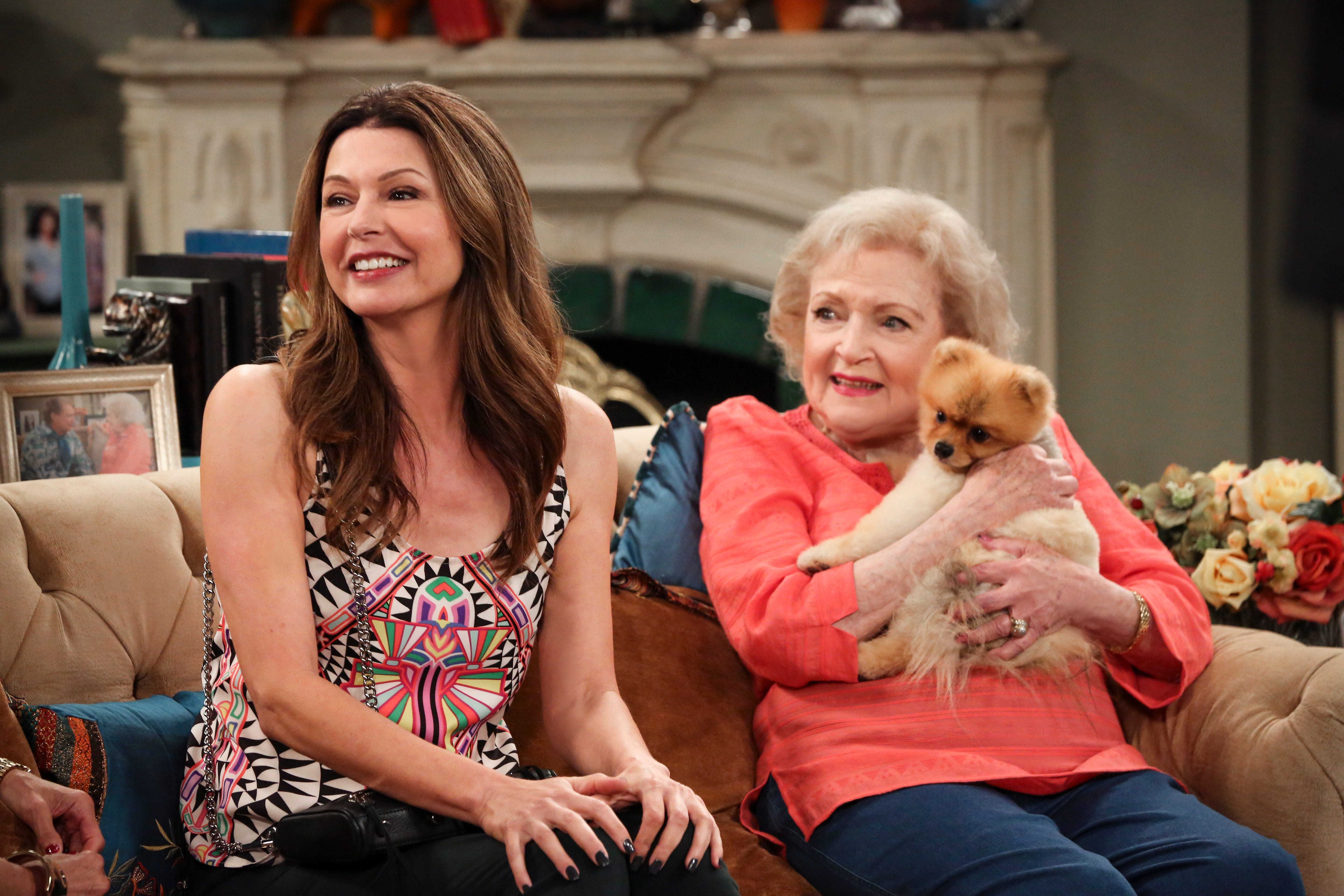 Breed of dog in hot in cleveland show