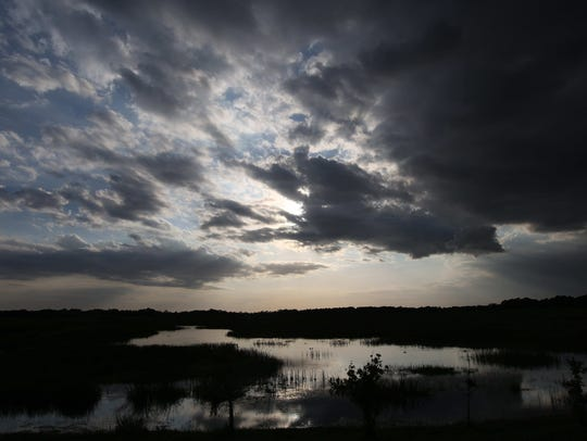 Clouds roll through the sky over Harns Marsh in Lehigh Acres. The state is granting millions of dollars to three universities to study man-made marshes like Harns that are south of Lake Okeechobee.