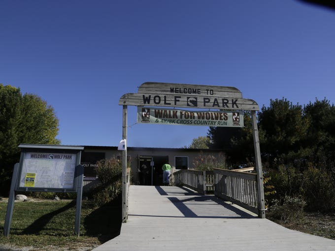 The seventh annual Walk for Wolves and Cross Country