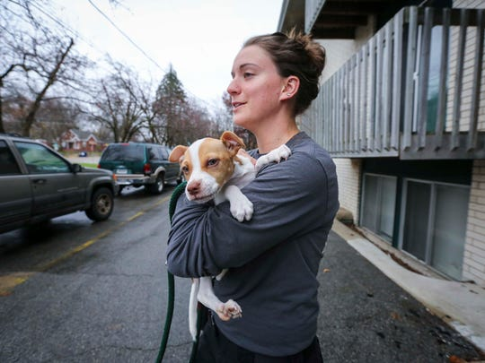 Animal control officer Devon Strief pick up a stray dog on the south side of Des Moines, Iowa, on Monday, Nov. 16, 2015, to take the Animal Care and Control Center on Southeast 14th Street.