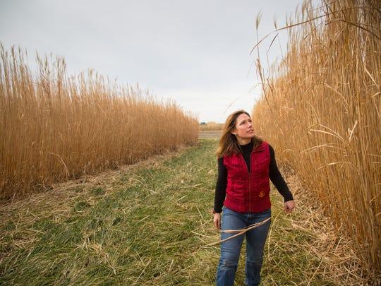 Emily Heaton, Associate Professor of Agronomy at Iowa
