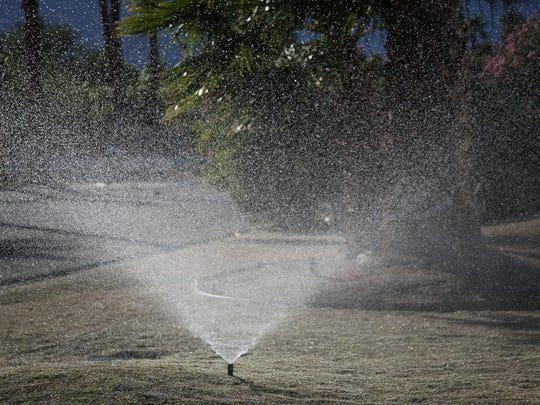 A sprinkler sprays a yard in Palm Springs in December.