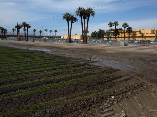 Sprinklers water a field across the street from Coachella Valley High School on Tuesday, February 23, 2016 in Thermal.
