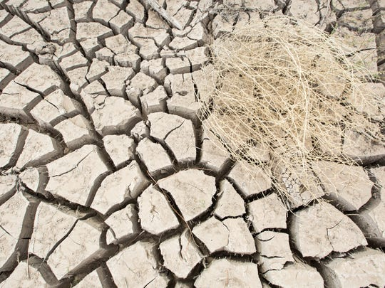 A dry Rio Grande bed in Vado, New Mexico on Monday, March 28, 2016. Climatologists are predicting higher temperatures and longer heat waves for the Las Cruces area over the next 35 years.