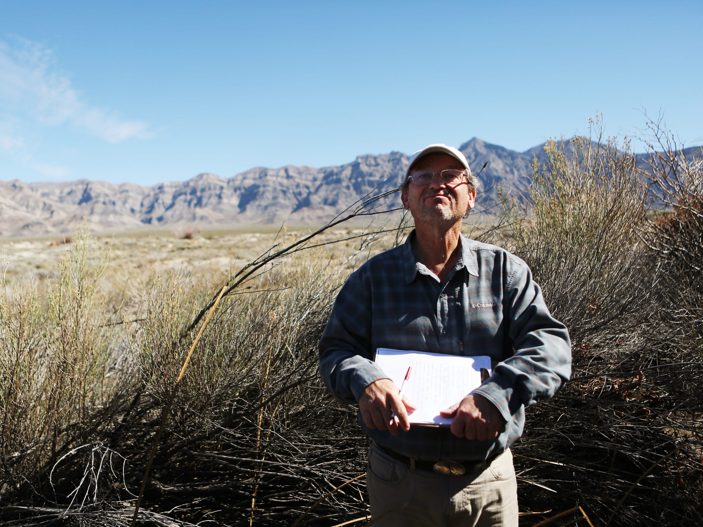 Andy Zdon looks over the vegetation at a spring in the Mojave Desert. He has surveyed more than 300 springs in a desert-wide study.