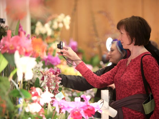 Up to 10,000 people are expected at the WNC Orchid Society's annual Orchid Show April 15-17. It has been expanded to three days this year and held in conjunction with the American Orchid Society's annual meeting.