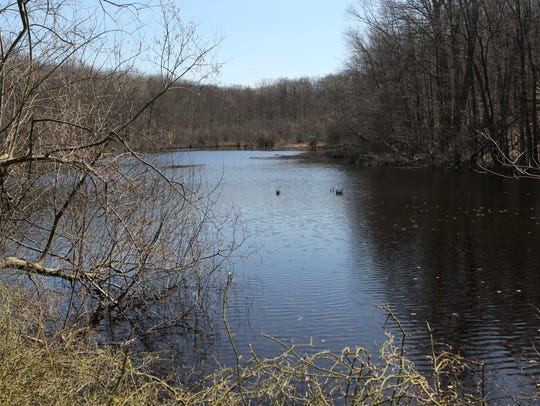 A view of the South Pond at the Cranberry Lake Preserve