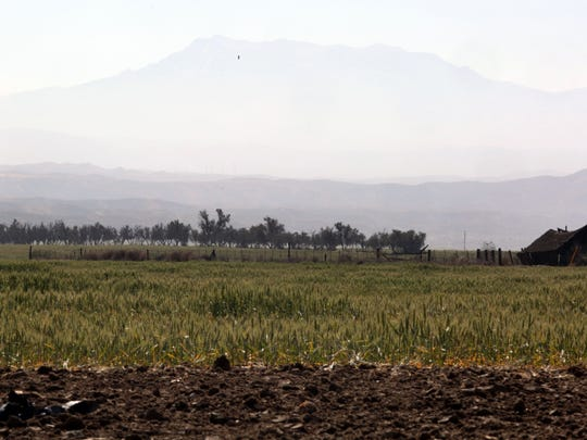 The site of the World Logistic Center with Mt. San