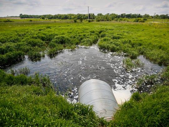 A wetland sits near at Center Lake in Spirit Lake Monday, May 23, 2016.