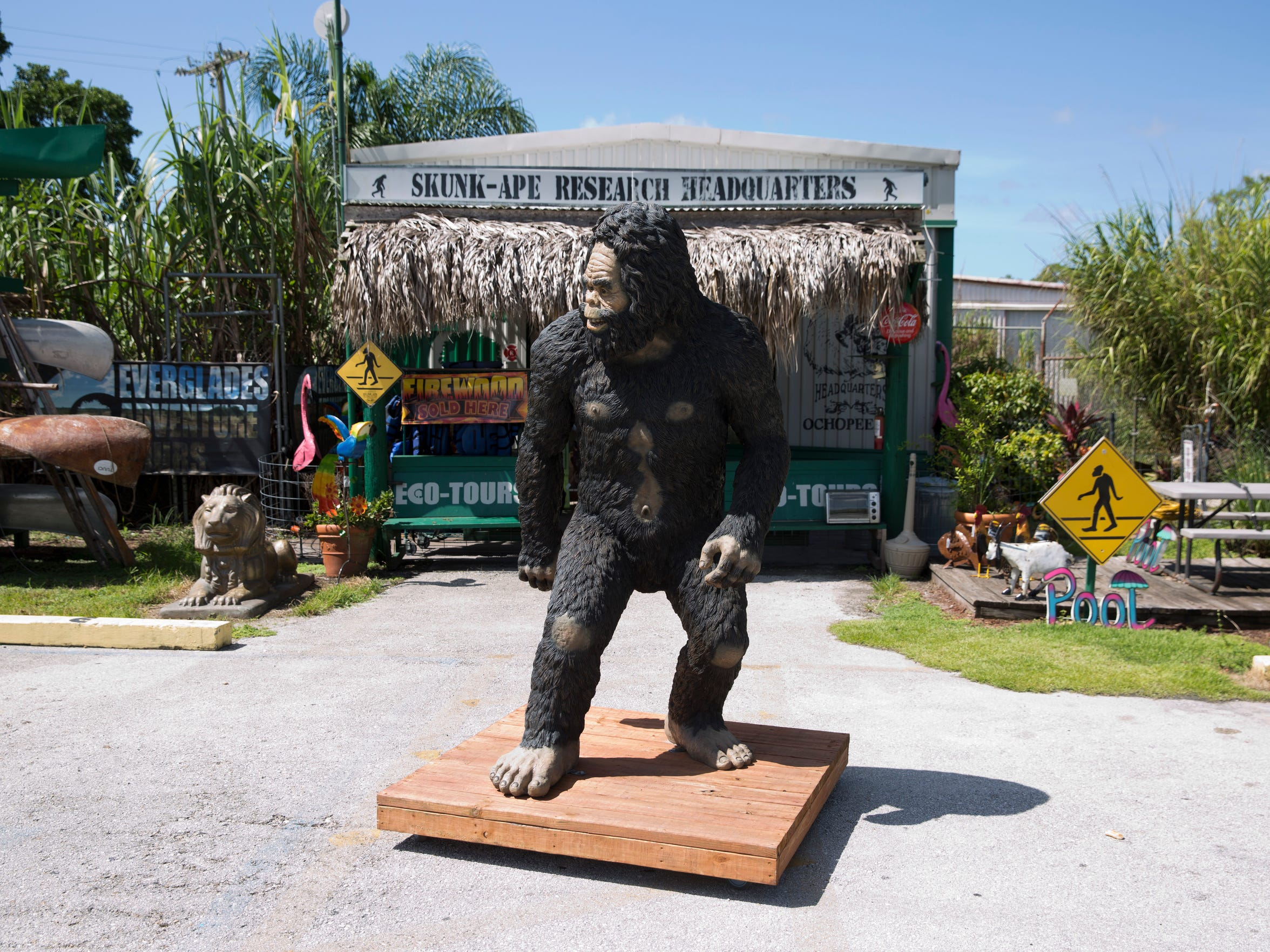 A statue of a skunk ape stands near the entrance to