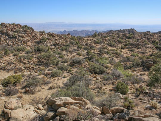 Explore the trails of the Santa Rosa mountains this Valentine's Day.