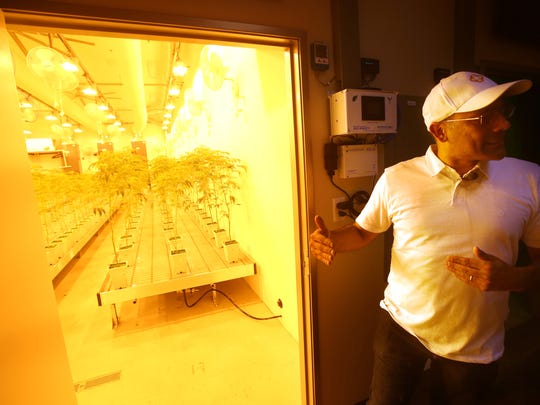 Canndescent CEO Adrian Sedlin gives a tour to media