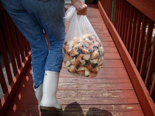 Pat Kirk carries a bag of stone crab claws to the Old Marco Lodge Crab House Wednesday, May 11, 2016 at Kirk Fish Company in Goodland, Fla. The Marriott Beach Resort will host its first stone crab festival from noon to sundown Saturday, Dec. 2.