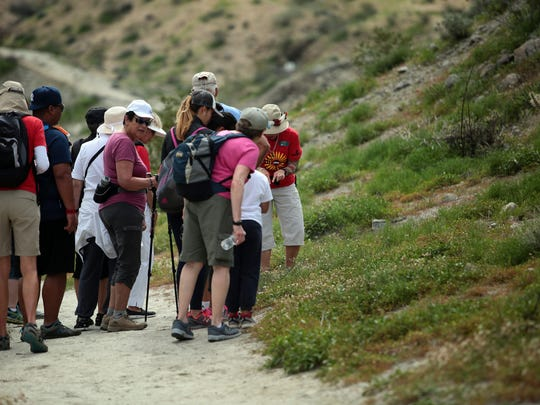 Volunteers with the Friends of the Desert Mountains lead a hike along the Randell Henderson Trail during the Annual Coachella Valley Wildflower Festival on Saturday, March 4, 2017 in Palm Desert.