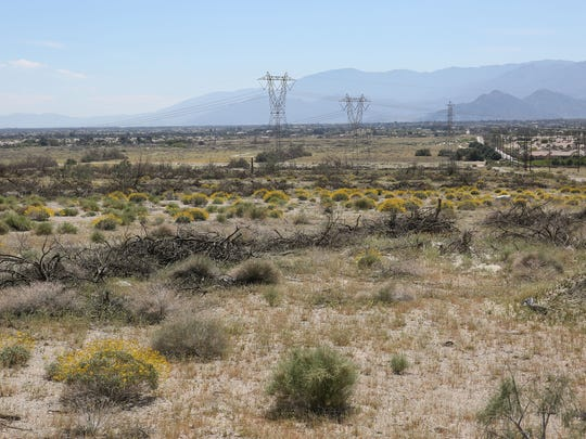 Developers are designing a large housing project on this area just northeast of Sun City Palm Desert near Washington Street. Photo taken March 20, 2017.