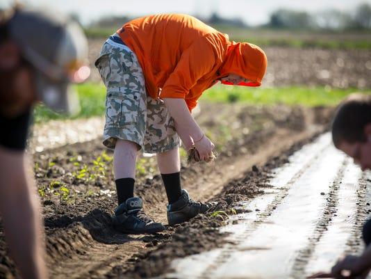 homestead autism farming