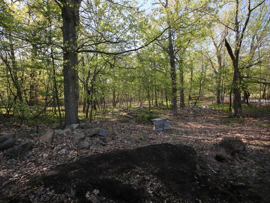 A view of marsh land bought by a church that plans to develop off of Mountainview Avenue in Valley Cottage May 3, 2017.