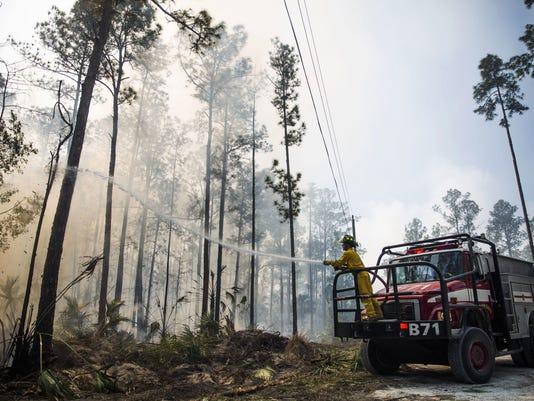 AP WILDFIRES FLORIDA A USA FL