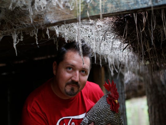 Sopchoppy City Council Member Becton Roddenberry holds his prize rooster, Rascal, in his chicken coop at Roddenberry Hills Farms in Sopchoppy June 13.