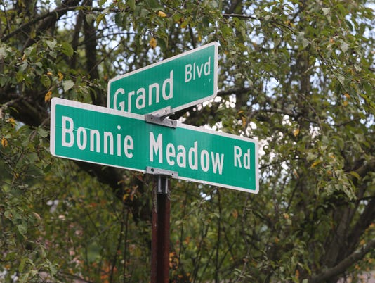 Bonnie Meadow Road