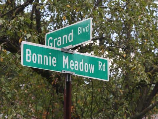 Bonnie Meadow Road
