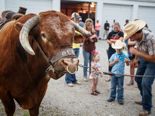 """Jason Dent's bull Ole gave rides before Jason's first episode on this season of Big Brother.  Supporters packed the Humeston Fire Department to watch Jason, a rodeo clown who performs as """"Whistle-Nut"""" compete on Big Brother Wednesday, June 28, 2017."""