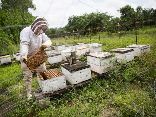 Citizen 0708 A cover (beekeeper)