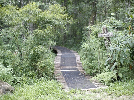 A boardwalk, pictured June 26, leads into the woods next to a small creek on the Miccosukee Land Co-op