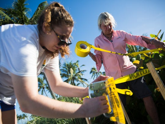 Maura Kraus, sea turtle program coordinator for Collier County, right, and Maddy Kenton, sea turtle intern with the Conservancy of Southwest Florida, mark a new sea turtle nest on Saturday, July 15, 2017 along the beach in downtown Naples.