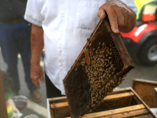 Ed Buchanan with Sourwood City Apiaries performs a bee keeping/honey making demo during the 37th annual Sourwood Festival in downtown Black Mountain.