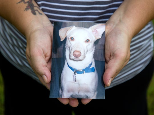 Megan Bailey holds a photo of her rescue dog, Max,