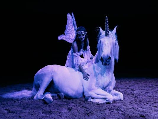 636383946845880535-royalhorses1.jpg