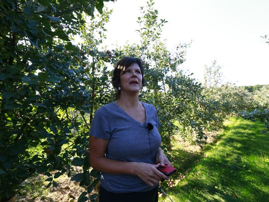 Julie Knetter looks up at some apples while talking
