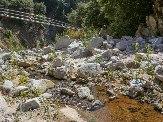 Nestle's pipeline transports water alongside Strawberry Creek in the San Bernardino National Forest.