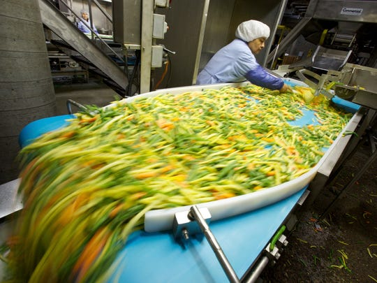 In this 2013 file photo, Norpac inspector Gudelia Martinez looks for defects in a blend of beans and carrots bound for the Flav-R-Pac label in Salem, Ore.