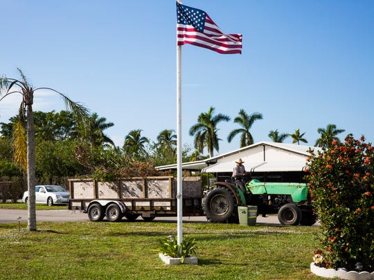 Landscape crews continue to pick up debris at Citrus Park in Bonita Springs, Fla., on Wednesday, Dec. 6, 2017, three months after Hurricane Irma hit Southwest Florida.