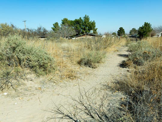 The Doña Ana County Historical Society plans to preserve an abandoned cemetery, colloquially known as the Old Picacho Cemetery, but properly named El Campo Santo de la Familia Sagrada.