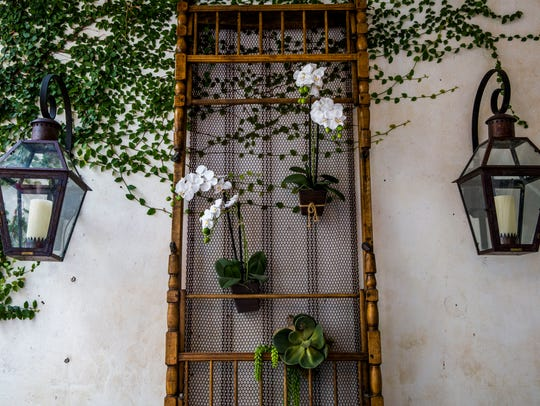 An antique military cot from the Civil War has been mounted on one exterior wall for a unique display of orchids and succulents.