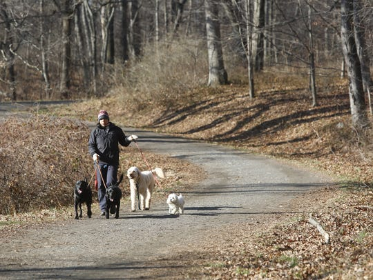 Rockefeller State Park Preserve is popular among runners