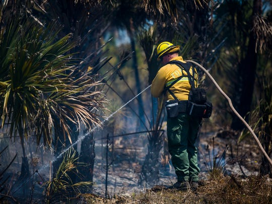 A wildland firefighter uses a tactic called 'pump and roll' to put water on spots along the north side of 62nd Avenue SE during the Flag Pond Fire  in Picayune Strand State Forest on Friday, March 23, 2018.