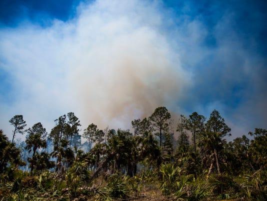 #file NDN 0323 FIRE