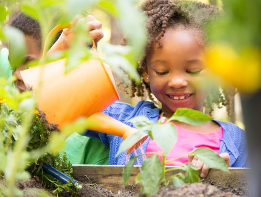 African descent children gardening outdoors in spring.