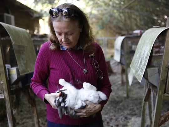 Founder Marianne Horchler holds one of the Holland lop rabbits she breeds at BunnyLops rabbitry in Thomasville, Ga. Wednesday, March 28, 2018.