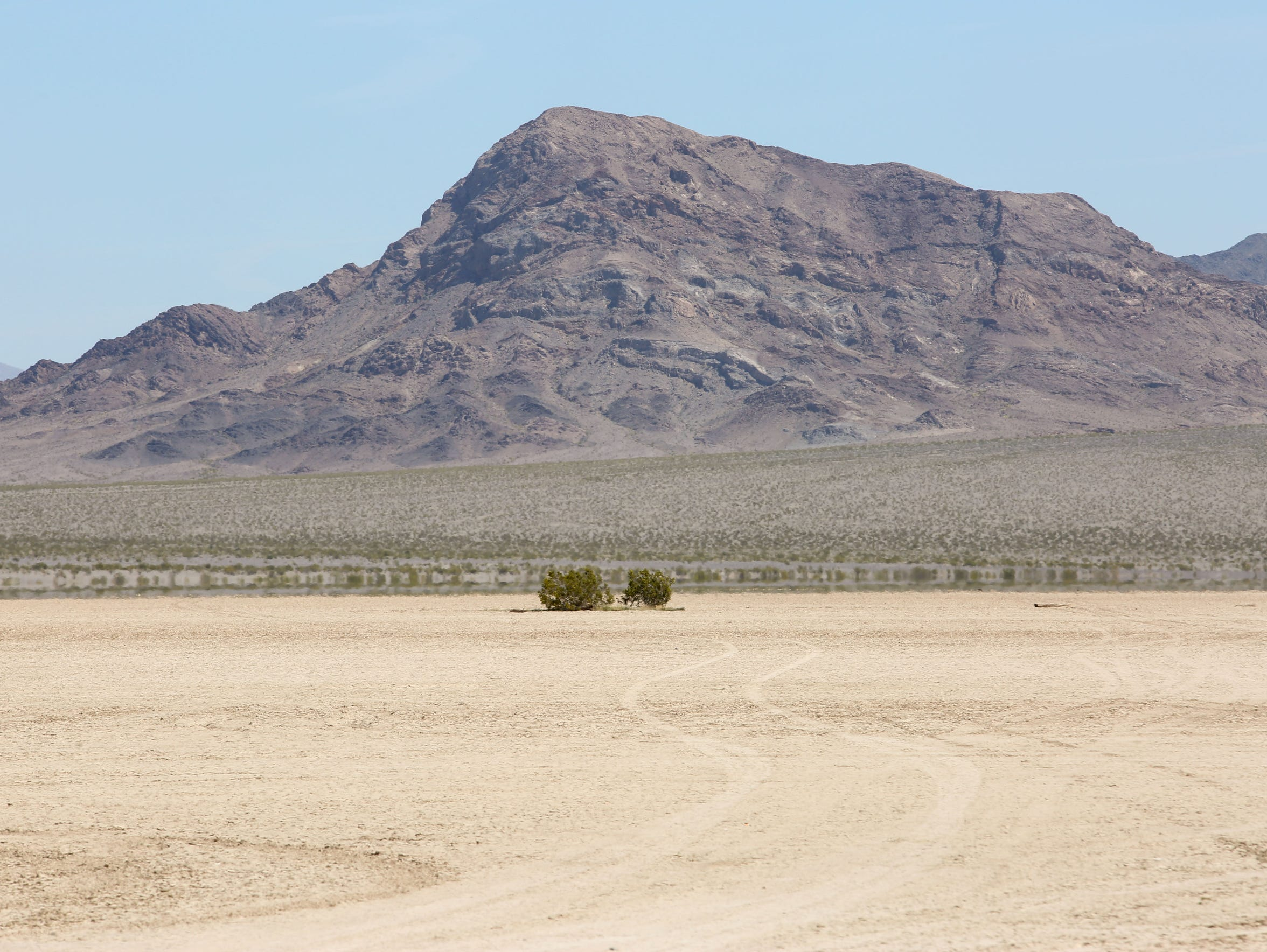 Two creosote bushes on Silurian Lake, a dry lake off