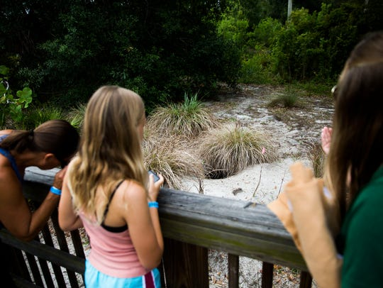 From left, Christy Peterson, her daughter Marin Robinson, 11, and Katie Ferron, nature center programs coordinator, look into a gopher tortoise's burrow at the Conservancy of Southwest Florida on Saturday, May 19, 2018.