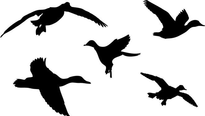 Duck Dynasty camo pattern stencil
