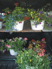 Flowers will be available at Coshocton Farmers' Market